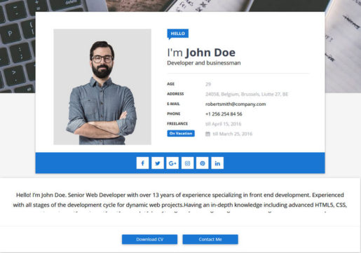 Sora-CV-Blogger-Template